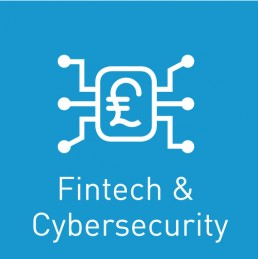 Fintech and cybersecurity